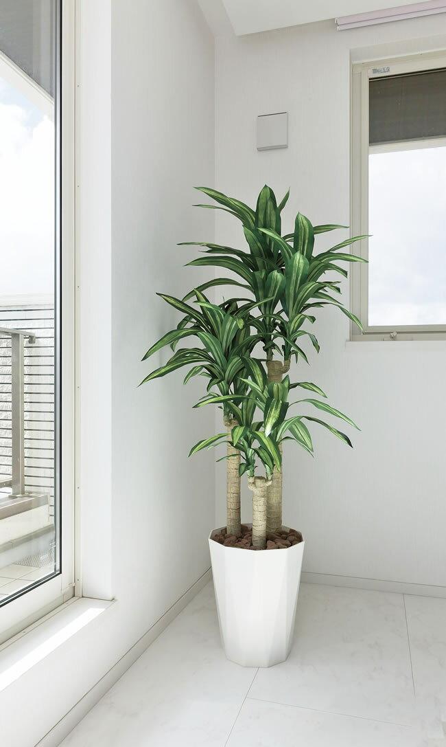 光触媒 観葉植物光の楽園 幸福の木 高さ1.6m【ドラセナ 人工観葉植物 大型 送料無料】
