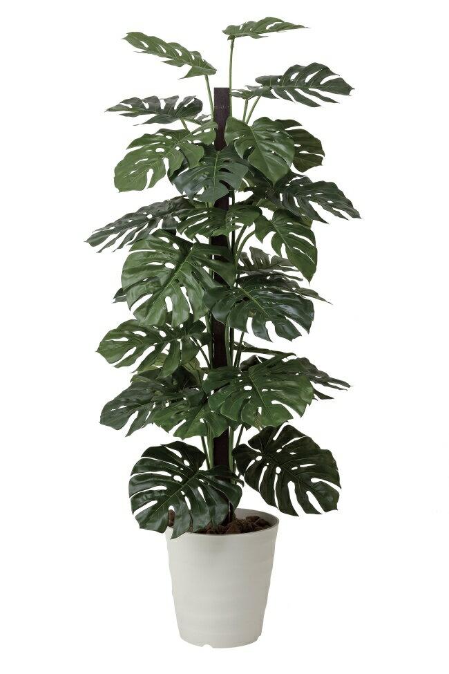 光触媒 光の楽園 モンステラ 高さ1.8m【インテリアグリーン 大型 人工観葉植物】