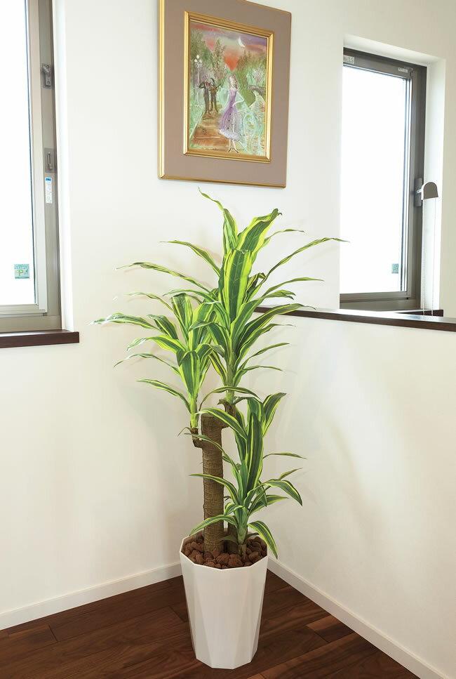 【送料無料】光触媒 光の楽園フレッシュドラセナ 高さ1.25m【インテリアグリーン 人工観葉植物 幸福の木】