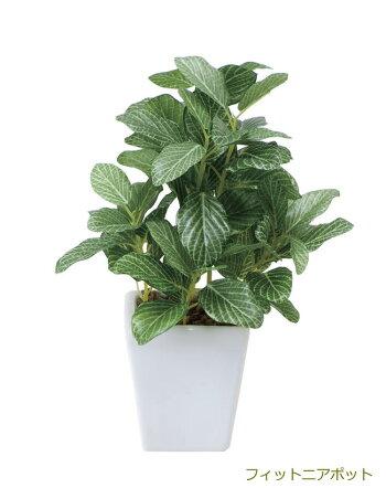 光触媒観葉植物光の楽園ミニグリーン選べる3タイプ【光触媒人工観葉植物造花】