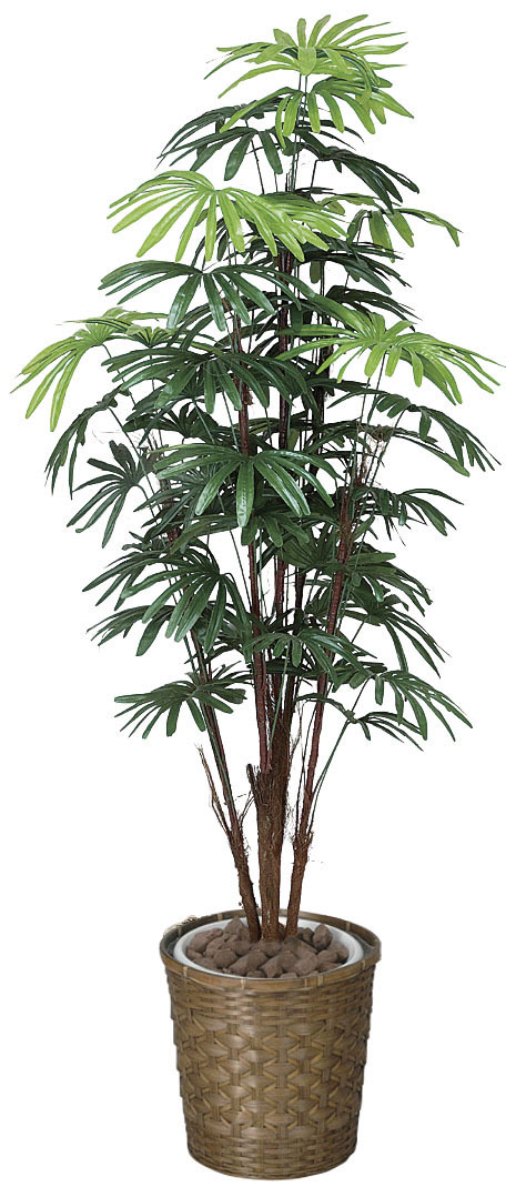 光触媒 光の楽園 シュロチク 高さ1.6m【インテリアグリーン 人工観葉植物 アジアン】