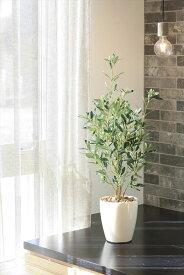 光触媒 人工観葉植物光の楽園 オリーブ 高さ73cm【フェイクグリーン 観葉植物 インテリア おしゃれ】