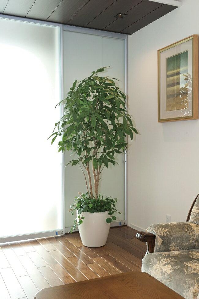 光触媒 光の楽園パキラ植栽付 高さ1.8m【大型 人工観葉植物】