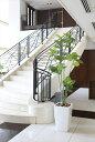 光触媒 人工観葉植物光の楽園 アーバンブランチウンベラータ1.9mインテリア フェイクグリーン