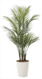 光触媒 人工観葉植物光の楽園 アレカパーム1.35mインテリア フェイクグリーン