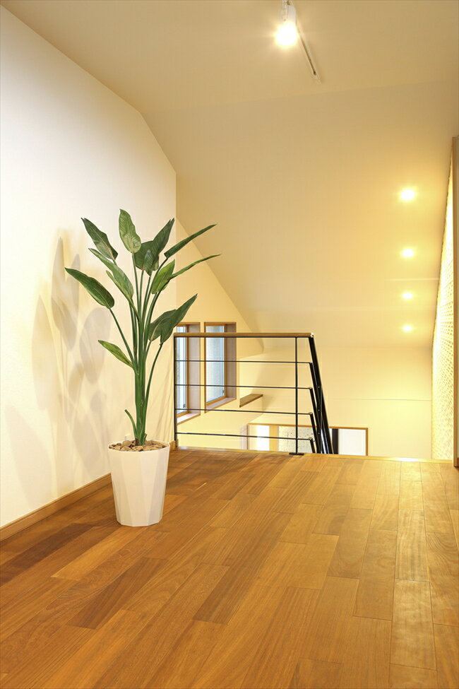 光触媒 人工観葉植物光の楽園 ストレチア 高さ1.6mインテリア フェイクグリーン 新築祝い・開店祝い・開業祝いなどに
