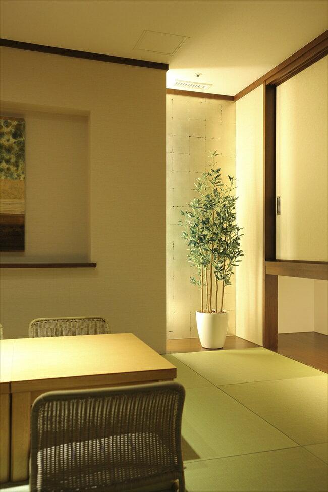 光触媒 人工観葉植物光の楽園 オリーブ1.6mインテリア フェイクグリーン