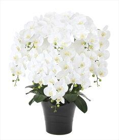 光触媒 造花光の楽園 フレッシュ胡蝶蘭W8本立フラワーアレンジメント