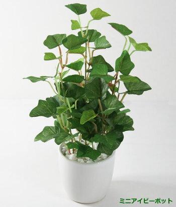 光触媒光の楽園ミニアイビーポット【フェイクグリーン人工観葉植物人工樹木造花】