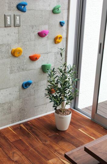 光触媒光の楽園オリーブ高さ90cm【インテリアグリーン人工観葉植物】
