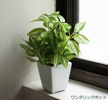 光触媒観葉植物光の楽園【光触媒人工観葉植物造花】