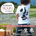 一生餅/一升餅の新スタイル一升米/名前入りTシャツ【一歳の誕生日に一升餅(一生餅)/小分けも簡単】【出産祝い】【1歳】【ベビーリュ…