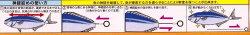 吉見製作所鮮度たもつ君Φ1.2mm×100cm(形状記憶合金神経絞めワイヤー)YOSHIMI.IncSendoTamotsukun釣具フィッシング通販神経締め神経抜き方法鼻ワイヤー道具工具ツールヒラメスズキ鯛アジ