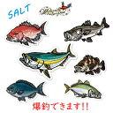 ウォーターサイドピーターパンオリジナルステッカー ソルト (海水魚) Rサイズ WATER SIDE PETERPAN ORIGINAL STICKER通販 釣り…