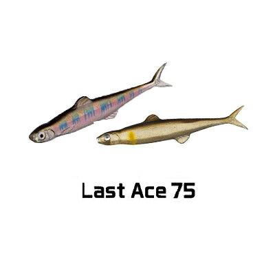 エバーグリーン ファクト ラストエース75EVERGREEN FACT LAST ACE 75釣り具 フィッシング ワーム ソフトルアー ブラックバス スイムベイト テキサス ノーシンカー 福島健 【2個までメール便OK】
