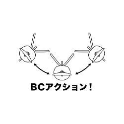 bc1611.jpg
