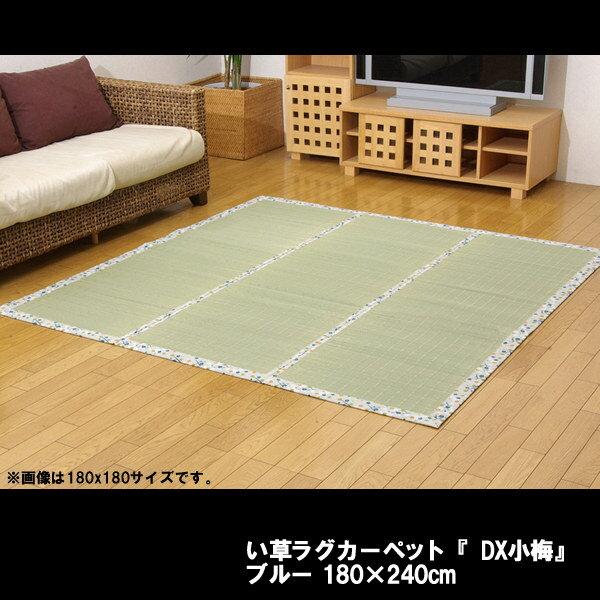 い草ラグカーペット 『DX小梅』 ブルー 約180×240cm(裏:不織布):送料無料