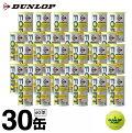 ダンロップ(DUNLOP) フォート 2球×30缶 (DUNLOP FORT) DFDYL2DOZ 硬式テニスボール ITF JTA 公認球
