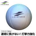 フィールドフォース FIELDFORCE野球 トレーニングボールインパクトパワーボール Cサイズ 300gFIMP-680C