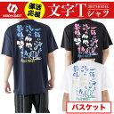 ビジョンクエスト VISION QUEST バスケットボール 半袖バスケ文字Tシャツ VQ570413G01