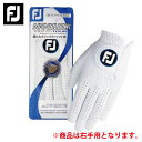 フットジョイ FootJoy ゴルフ 右手用グローブ NANOLOCK TOUR FGNT17