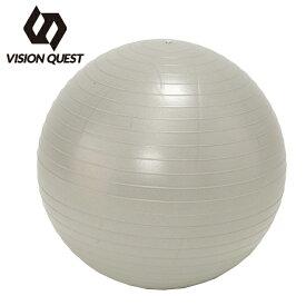 ビジョンクエスト VISION QUEST ジムボール ノンバーストジムボール65 VQ580105I12