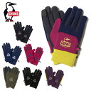 チャムス CHUMS 手袋 メンズ レディース ポーラテックパワーストレッチグローブ CH09-1165