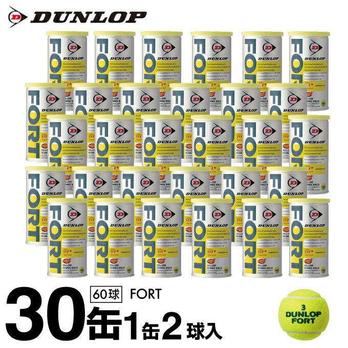 ダンロップ DUNLOP硬式テニスボールフォート FORT 2球×30缶セット TBST