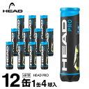 ヘッド 硬式テニスボール セット HEADPRO ヘッド・プロ 4球×12缶セット 571614 HEAD