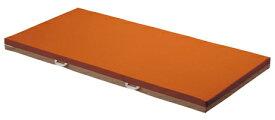 (介護ベッド用)パラマウントベッド製エバーフィットマットレス(清拭タイプ)(100cm幅)(KE-527Q) 【お役立ちグッズ睡眠】 (ハイ・スタンダードマットレス)