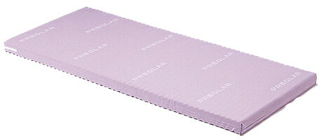 (介護ベッド用)パラマウントベッド製プレグラーマットレス(100cm幅)KE-557Q【お役立ちグッズ睡眠】【介護ベット】 (スタンダードマットレス)