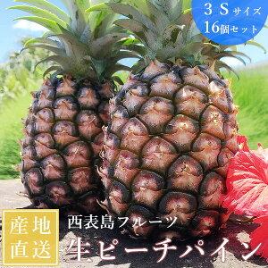西表島フルーツ ピーチパイン サイズ3S 16個セット 送料無料 パイナップル パインナップル 沖縄 テレビ放映 イッテQ プレゼント ギフト