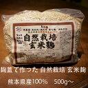 新米・無肥料(無化学・無有機)・無農薬・無除草剤【自然栽培玄米こうじ500g】・熊本県産の自然栽培玄米100%使用 無…