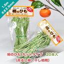 柿のひも カットタイプ 20本入(吊るし柿・干し柿用)太さ2.5mm 長さ1.5m