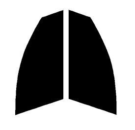 ●スパッタゴールド 運転席、助手席 メルセデス・ベンツ Cクラス ワゴン W205カット済みカーフィルム ハードコート 代引き注文不可