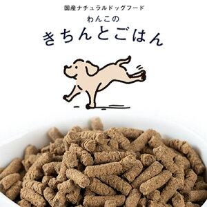 【ネコポス配送】《送料無料》★1袋★わんこのきちんとごはん300g(小さいサイズ 国産 ナチュラルドッグフード シニア 極小粒 犬