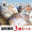 【送料無料】石窯パン3種セット【石窯焼き究極シンプルな自然パン/ドイツパン・イタリアパン】