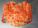 ボイルタラバガニ(メス)朝茹でタラバガニ 大サイズ1尾-2kg前後「送料無料」
