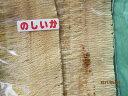 のしいか イカ 無添加 スルメイカ 1枚‐100g レターパックで送料無料 お花見 母の日 父の日 お中元 お歳暮 ギフト