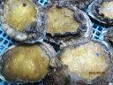 冷凍アワビ 冷凍あわび 天然冷凍アワビ アワビ冷凍 北海道産 あわび冷凍1個-150g前後-5個入り「送料無料」