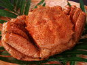 ボイル毛蟹 ボイル毛ガニ 朝茹で毛蟹 かに味噌 1尾特大1kg前後「送料無料」お中元 お歳暮 プレゼント