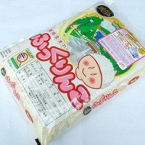 米 ふっくりんこ 北海道米 検査米 5kg 母の日 父の日 お中元 お歳暮 ギフト