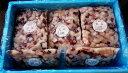 たこ タコ たこ焼き 【冷凍カットタコ ボイル約1cm角(1kg詰×21個)21kg】「送料無料」 タコ焼き お刺身