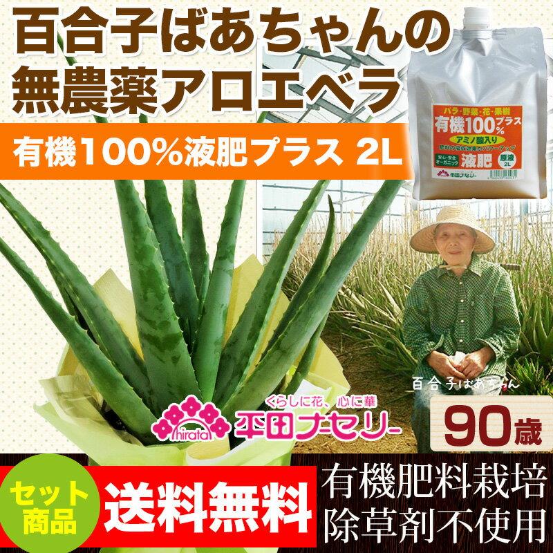 食用・食べられるアロエベラ 国産無農薬栽培アロエと有機100%液肥2L 1本セット  【02P03Sep16】
