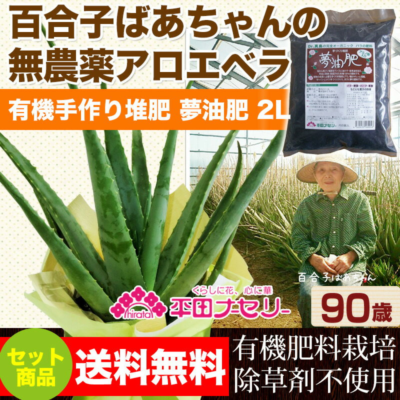 食用・食べられるアロエベラ 国産無農薬栽培アロエと夢油肥(ゆめゆひ)2L 1袋セット  【02P03Sep16】