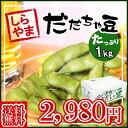 【予約】【送料無料】枝豆の王様!\1キロ 白山 だだちゃ豆(だだちゃまめ)/濃厚なコクと風味が口いっぱいに広がり…