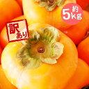 (予約)(送料無料)山形産 庄内柿(しょうないがき) 訳あり約5キロ 送料無料★11月上旬頃から順次発送開始予定
