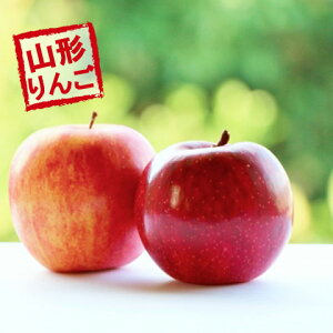 (予約)(送料無料)【たっぷり!てんこ盛り10kg】山形県産訳ありサンふじりんご10kg茶箱入り【ジューシーな山形のりんご】 りんご/リンゴ/訳あり/家庭用/わけあり