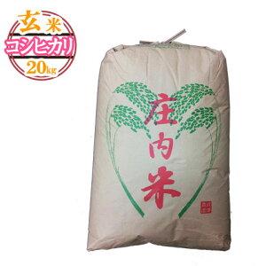 (令和2年産米)(令和元年産米)(随時発送)(送料無料)山形県産 コシヒカリ 玄米 20キロ★どぉ〜んと大特価!げんまい 20kg お米(おこめ)【安全で確かなものを食卓へ】