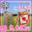 ●【28年産】【送料無料】山形県産 はえぬき 玄米 30キロ★げんまい 30kg(三十キロ)お米(おこめ)【安全で確かなものを食卓へ】 05P03Dec16